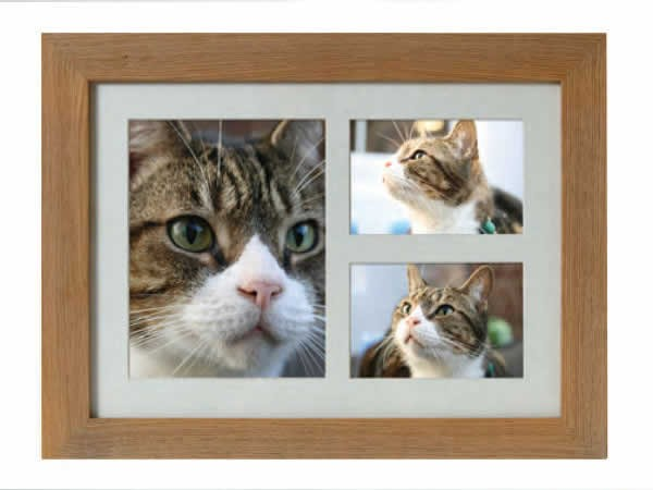 Buy Picture Frames Caskets And Urns At Pet Cremation S