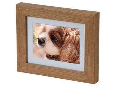 Mini Picture Frame Casket